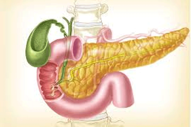 pancreatic-cancer2